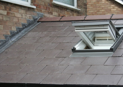 new skylight arnold